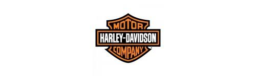 Harley Davidson blinkry